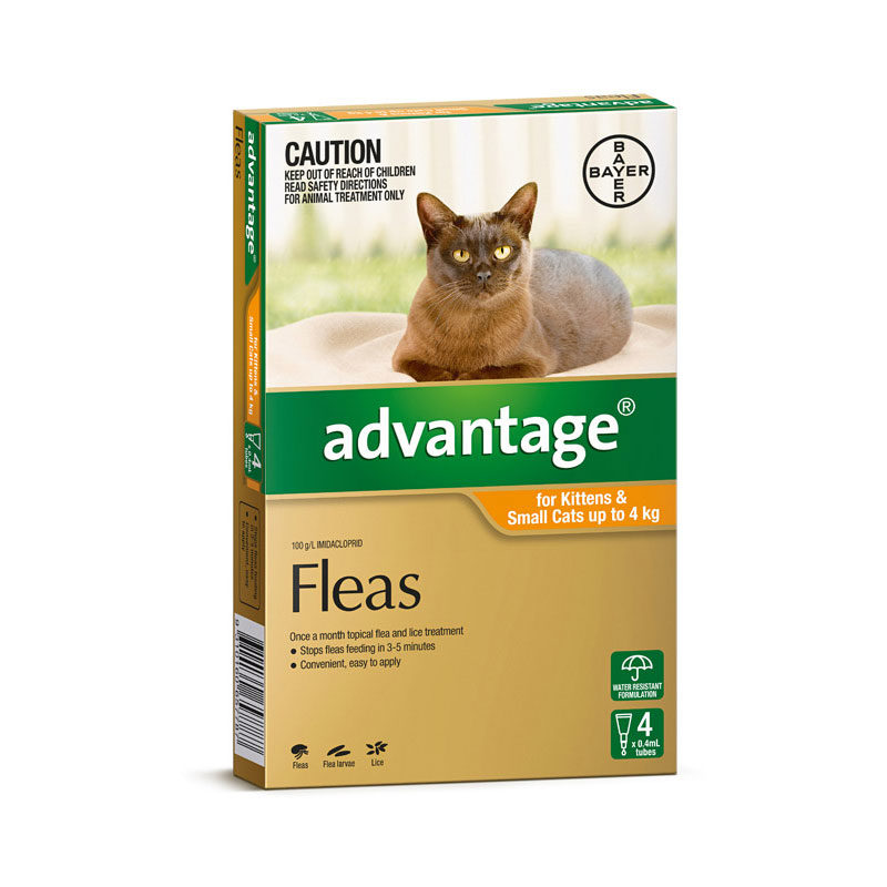 Advantage Orange Spot-On for Kittens & Small Cats - 4 Pack 1