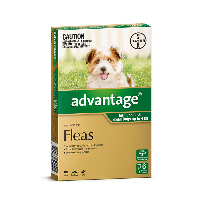 Advantage Green Spot-On for Puppies & Small Dogs - 6 Pack 1