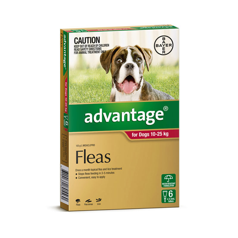 Advantage Red Spot-On for Large Dogs - 6 Pack 1
