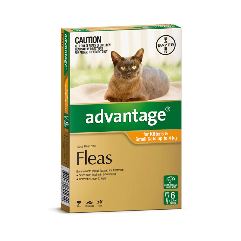 Advantage Orange Spot-On for Kittens & Small Cats - 6 Pack 1