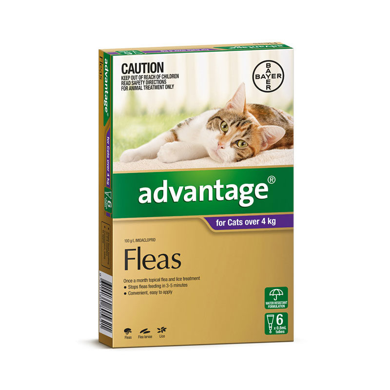 Advantage Purple Spot-On for Medium & Large Cats - 6 Pack 1