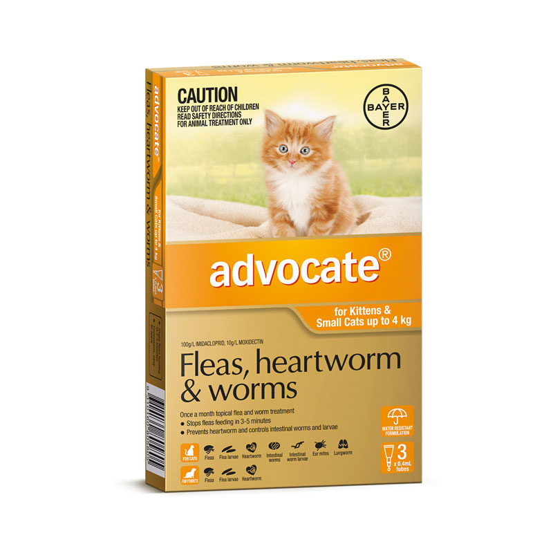 Advocate Orange Spot-On for Kittens & Small Cats - 3 Pack 1