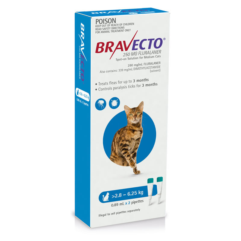 Bravecto Blue Spot-on for Medium Cats - 2 Pack 1