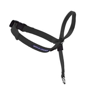 Gentle Leader Black Headcollar - Large