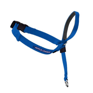 Gentle Leader Blue Headcollar - Large