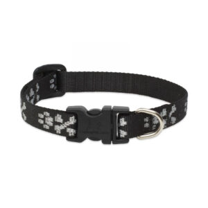 Lupine Bling Bonz Small Dog Collar 10-16""