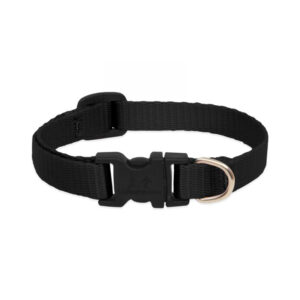 Lupine Black Large Dog Collar 12-20""
