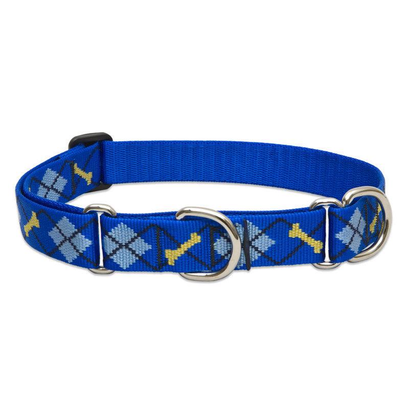 """Lupine Dapper Dog Large Dog Martingale Training Collar 15-22"""" 1"""