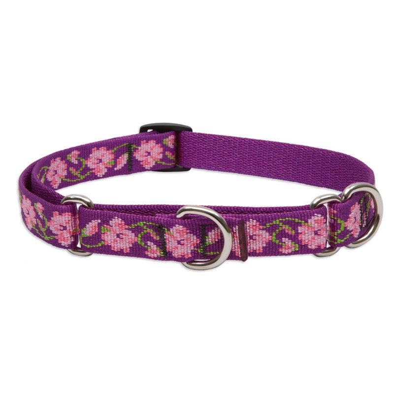"Lupine Rose Garden Medium Dog Martingale Training Collar 14-20"" 1"