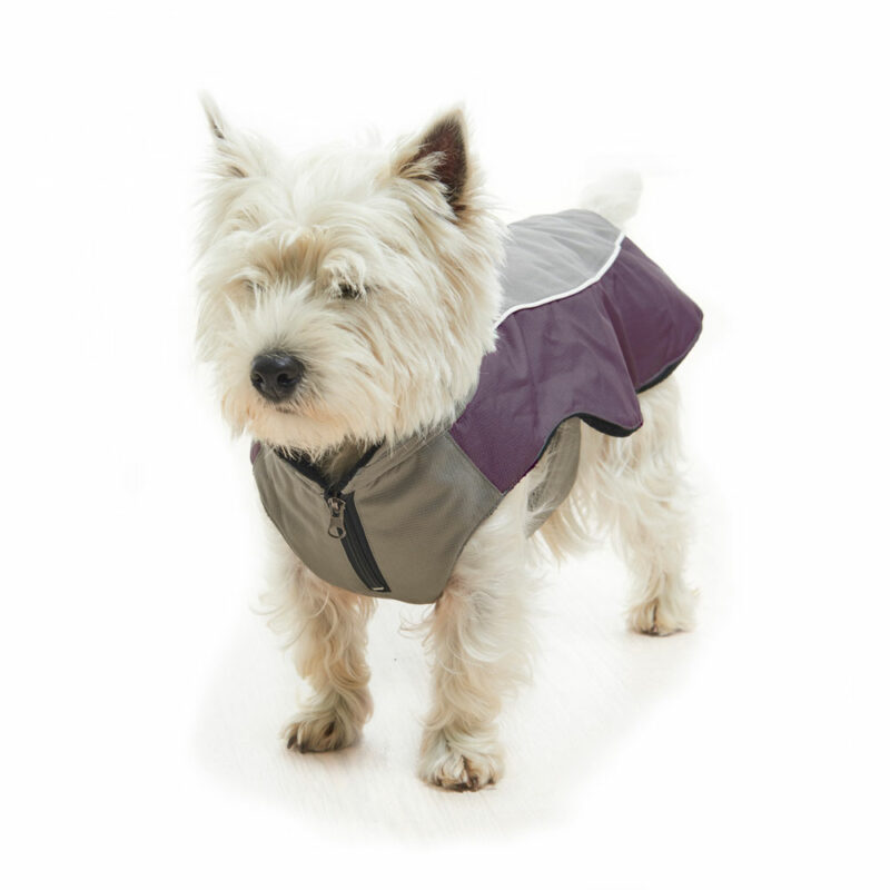 BUSTER Classic Winter Dog Coat Steel Grey/Black Plum X-Large 2