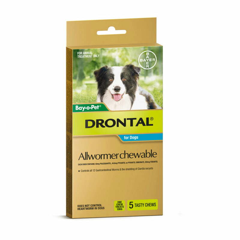 Drontal Allwormer Tablets for Dogs (up to 10kg) - 5 Pack 4