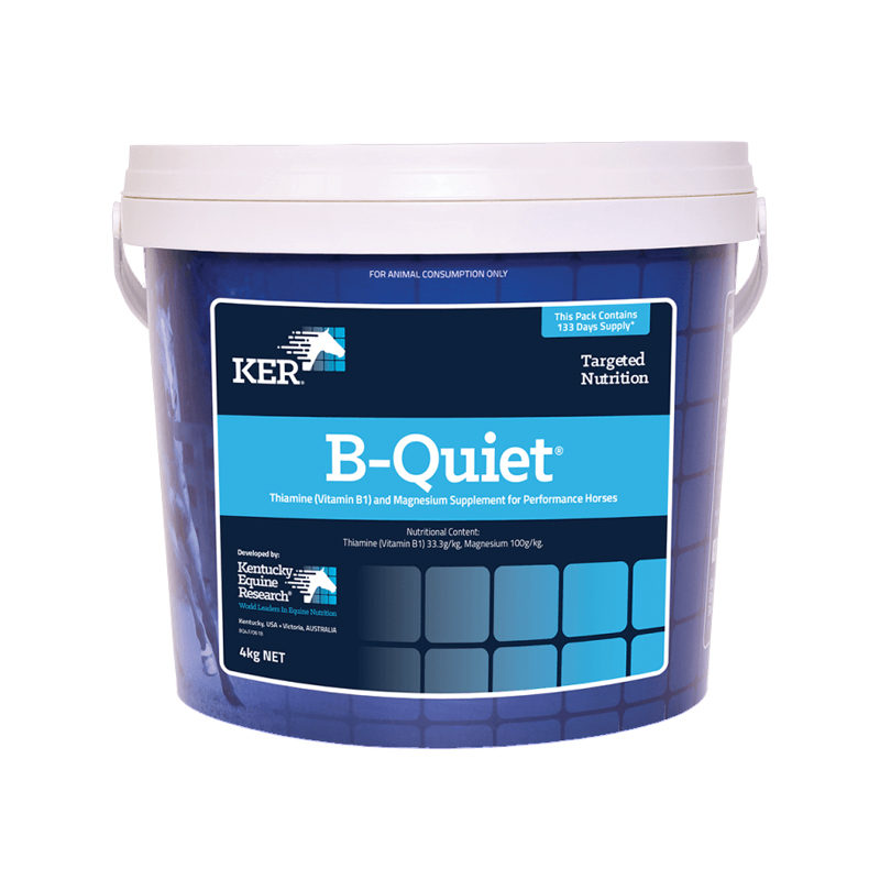KER B-Quiet Powder 4kg