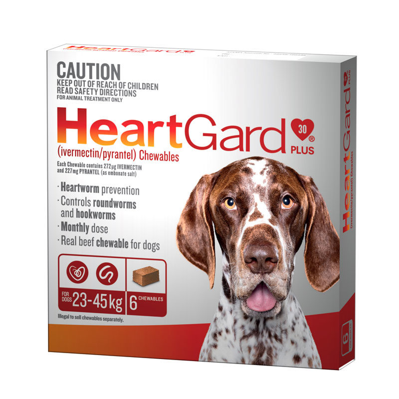HeartGard Plus Brown Chews for Large Dogs - 6 Pack 1