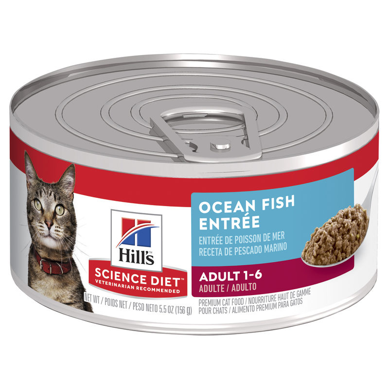 Hills Science Diet Adult Cat Ocean Fish Entree 156g x 24 Cans 1