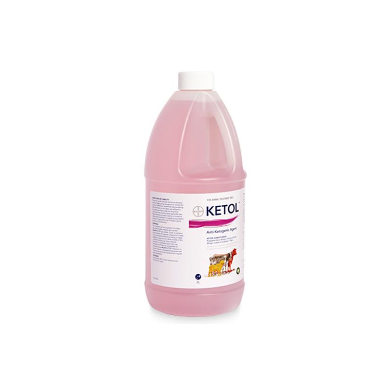 Ketol Anti-Ketogenic Agent 2L