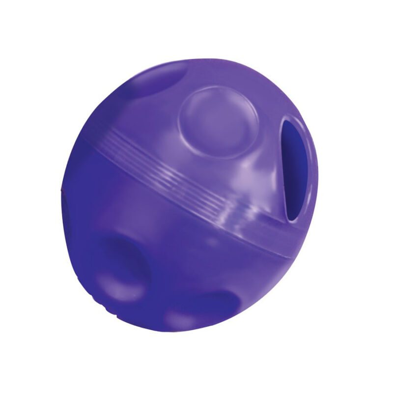 Kong Cat Treat Ball Dispenser 1