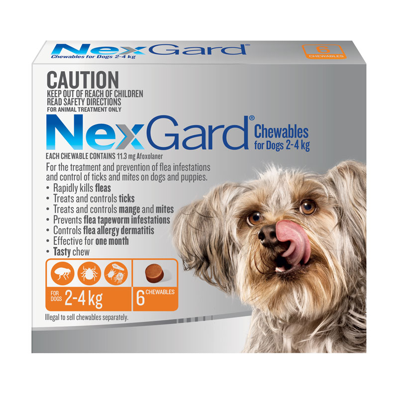 NexGard Orange Chews for Small Dogs (2-4kg) - 6 Pack 1