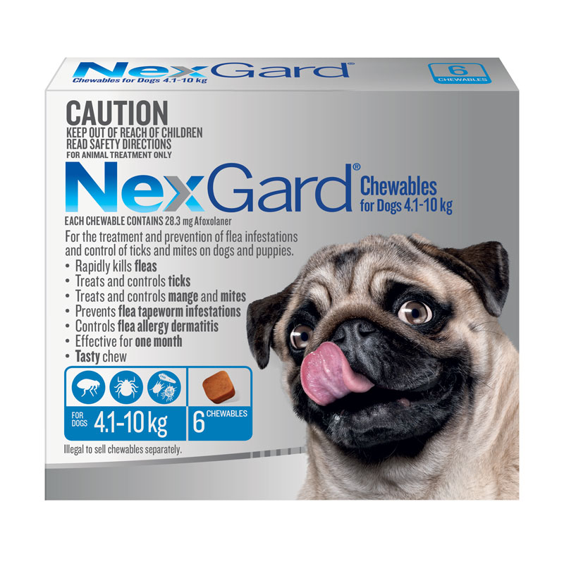 NexGard Blue Chews for Medium Dogs (4.1-10kg) - 6 Pack 1