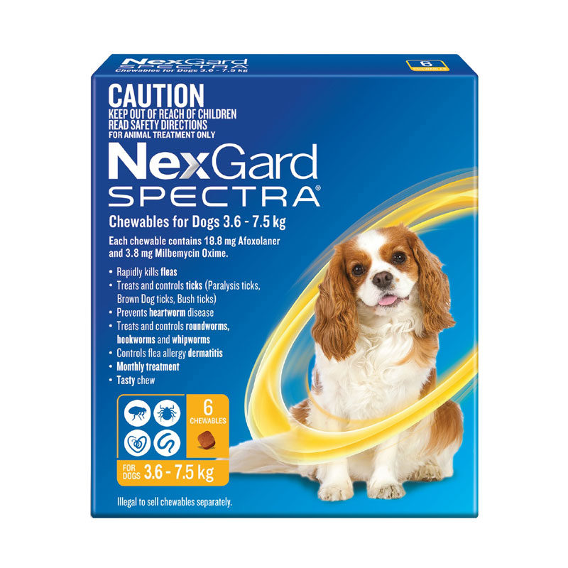 NexGard Spectra Yellow for Small Dogs (3.6-7.5kg) - 6 Pack 1
