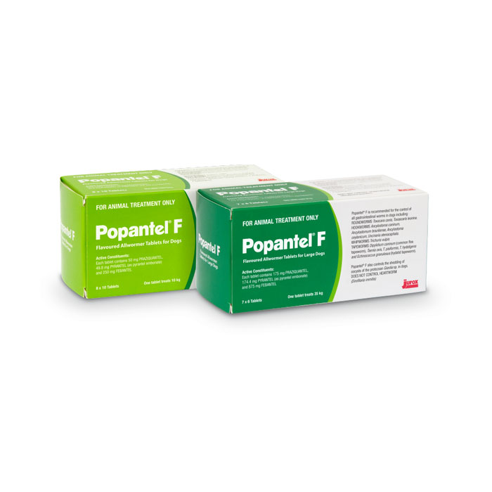 Popantel F Flavoured Allwormer Tablets for Large Dogs - 2 Tablets 1