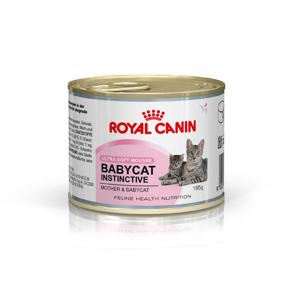 Royal Canin Feline Health Nutrition Babycat Instinctive Mousse 195g x 12 cans 1