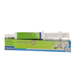Strategy-T Paste 35ml Syringe