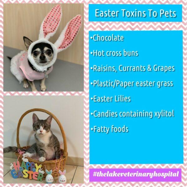 Easter Toxins 1