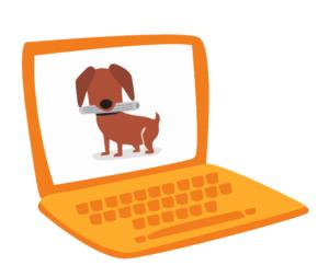 Online pet insurance claims 4